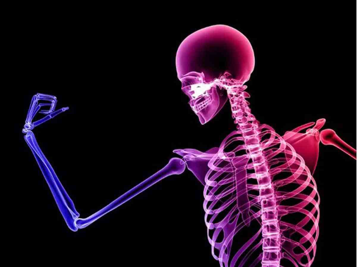 Optimal Exercise Prescription for Osteoporosis